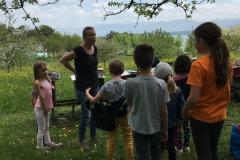 Visite des ruches de Mélanie